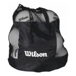 WIlson All Sports Bag