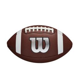 WTF1729XB_0_NFL_The_Legend_Official_Silver_Front.png.originalt.png
